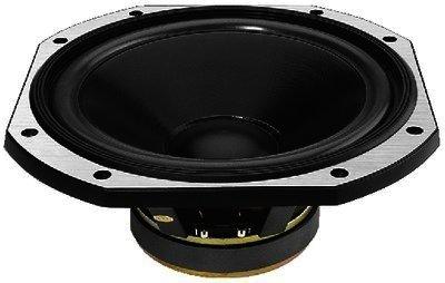 SPP-300/AD - Hochleistungs-HiFi-Bass, 250WMAX, 8 Ohm